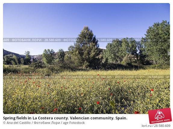Купить «Spring fields in La Costera county. Valencian community. Spain.», фото № 28580609, снято 19 мая 2018 г. (c) age Fotostock / Фотобанк Лори