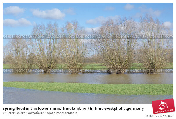 Купить «spring flood in the lower rhine,rhineland,north rhine-westphalia,germany», фото № 27795065, снято 18 октября 2018 г. (c) PantherMedia / Фотобанк Лори