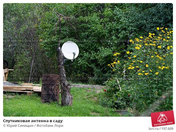 Спутниковая антенна в саду, фото № 197609, снято 26 августа 2007 г. (c) Юрий Синицын / Фотобанк Лори