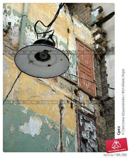 Срез, фото № 185769, снято 10 января 2006 г. (c) Светлана Шушпанова / Фотобанк Лори