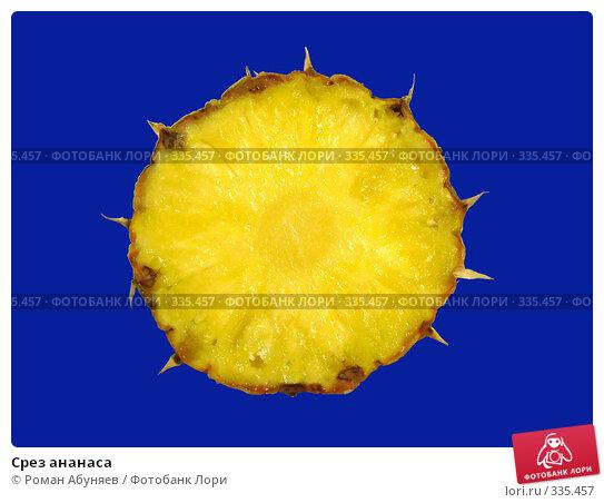 Срез ананаса, фото № 335457, снято 7 февраля 2008 г. (c) Роман Абуняев / Фотобанк Лори