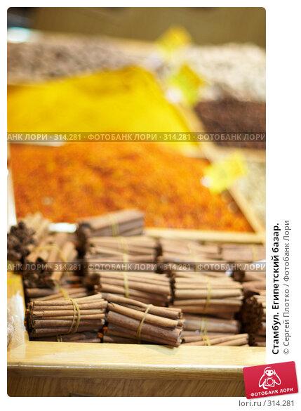 Купить «Стамбул. Египетский базар.», фото № 314281, снято 29 августа 2007 г. (c) Сергей Плотко / Фотобанк Лори