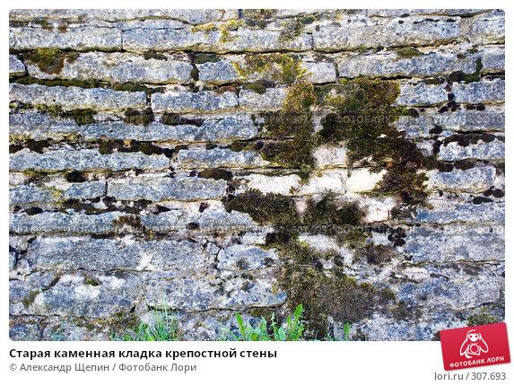 Купить «Старая каменная кладка крепостной стены», эксклюзивное фото № 307693, снято 17 мая 2008 г. (c) Александр Щепин / Фотобанк Лори