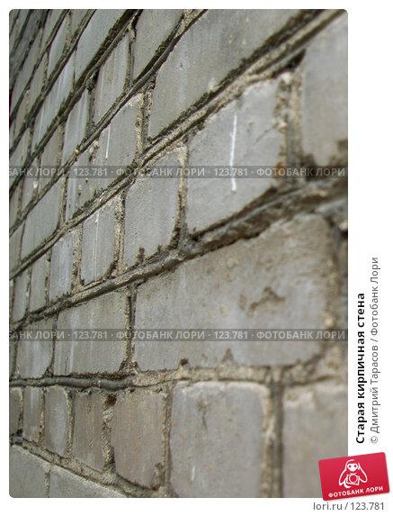 Купить «Старая кирпичная стена», фото № 123781, снято 10 июля 2007 г. (c) Дмитрий Тарасов / Фотобанк Лори