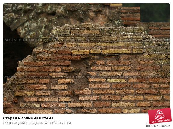 Старая кирпичная стена, фото № 240505, снято 24 мая 2017 г. (c) Кравецкий Геннадий / Фотобанк Лори