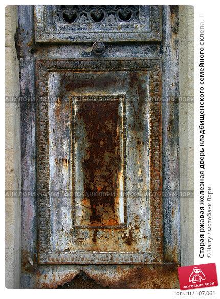 Старая ржавая железная дверь кладбищенского семейного склепа. Париж, Франция., фото № 107061, снято 26 февраля 2006 г. (c) Harry / Фотобанк Лори