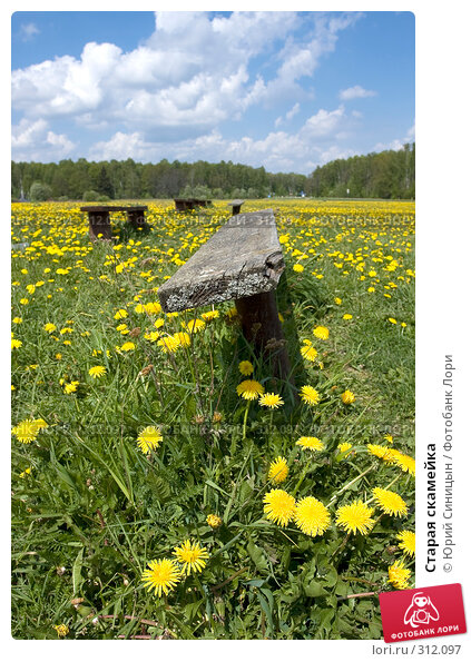 Купить «Старая скамейка», фото № 312097, снято 18 мая 2008 г. (c) Юрий Синицын / Фотобанк Лори