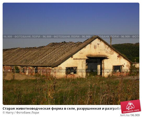 Старая животноводческая ферма в селе, разрушенная и разграбленная окружающими пейзажами, фото № 96909, снято 24 августа 2007 г. (c) Harry / Фотобанк Лори