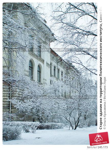 Старое здание на территории Политехнического института, Санкт-Петербург, фото № 245173, снято 27 января 2008 г. (c) Ольга Красавина / Фотобанк Лори