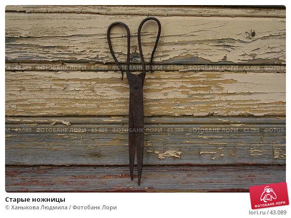 Купить «Старые ножницы», фото № 43089, снято 21 апреля 2007 г. (c) Ханыкова Людмила / Фотобанк Лори