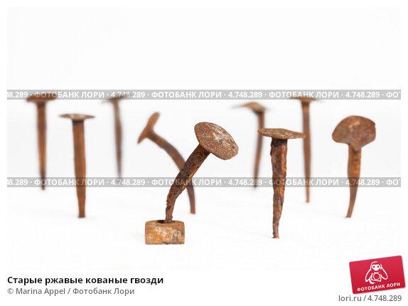 Купить «Старые ржавые кованые гвозди», фото № 4748289, снято 24 мая 2019 г. (c) Marina Appel / Фотобанк Лори