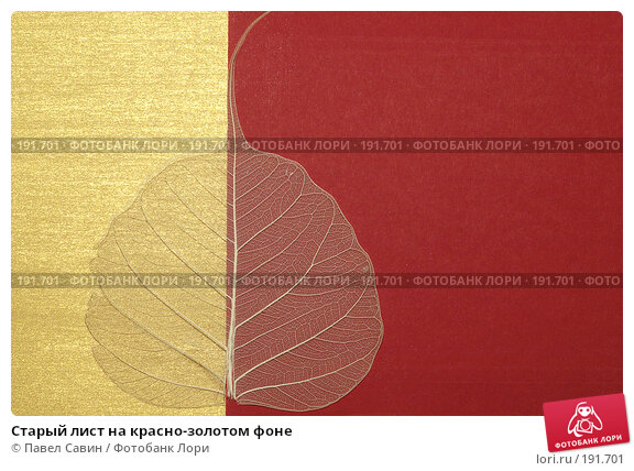 Старый лист на красно-золотом фоне, фото № 191701, снято 21 июля 2017 г. (c) Павел Савин / Фотобанк Лори