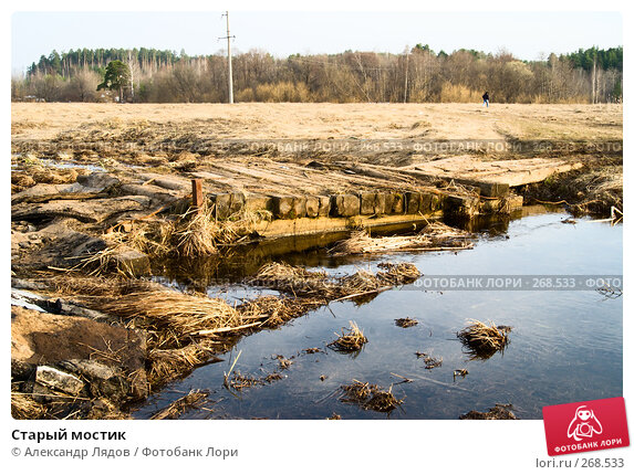 Старый мостик, фото № 268533, снято 12 апреля 2008 г. (c) Александр Лядов / Фотобанк Лори