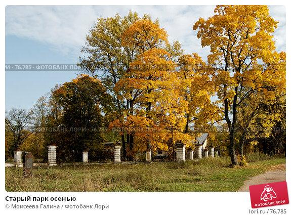 Старый парк осенью, фото № 76785, снято 7 октября 2006 г. (c) Моисеева Галина / Фотобанк Лори