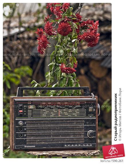 Купить «Старый радиоприемник», фото № 590261, снято 25 октября 2008 г. (c) Игорь Митов / Фотобанк Лори