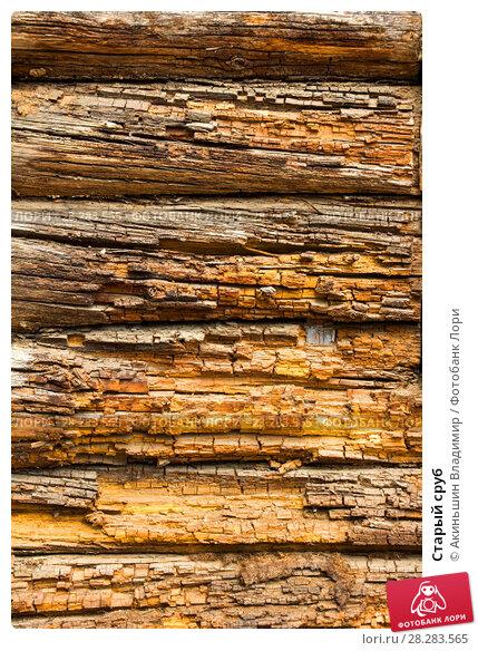 Купить «Старый сруб», фото № 28283565, снято 3 мая 2014 г. (c) Акиньшин Владимир / Фотобанк Лори