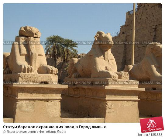 Статуи баранов охраняющих вход в Город живых, фото № 185533, снято 15 января 2008 г. (c) Яков Филимонов / Фотобанк Лори