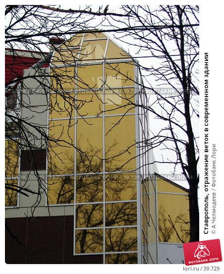 Ставрополь, отражение веток в современном здании, фото № 39729, снято 4 января 2005 г. (c) A Челмодеев / Фотобанк Лори