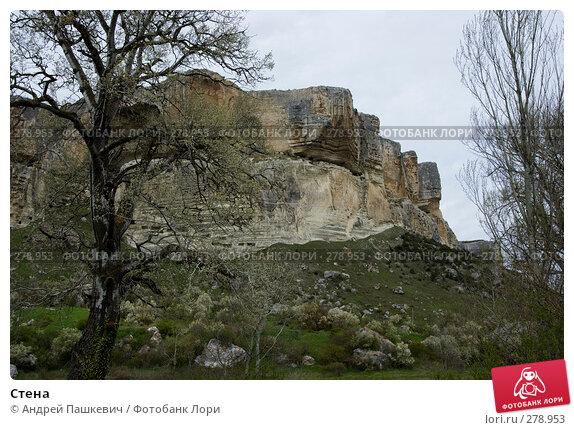 Купить «Стена», фото № 278953, снято 1 мая 2007 г. (c) Андрей Пашкевич / Фотобанк Лори
