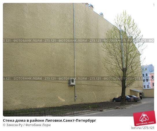 Стена дома в районе Лиговки.Санкт-Петербург, фото № 273121, снято 1 мая 2008 г. (c) Заноза-Ру / Фотобанк Лори