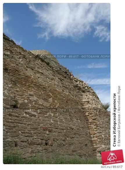 Стена Изборской крепости, фото № 89617, снято 18 августа 2007 г. (c) Евгений Батраков / Фотобанк Лори