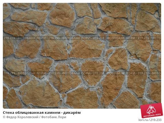 Стена облицованная камнем - дикарём, фото № 219233, снято 3 февраля 2007 г. (c) Федор Королевский / Фотобанк Лори