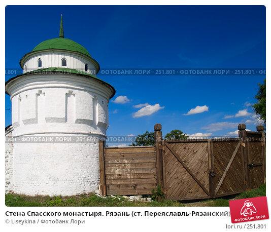 Стена Спасского монастыря. Рязань (ст. Переяславль-Рязанский), фото № 251801, снято 24 июля 2006 г. (c) Liseykina / Фотобанк Лори