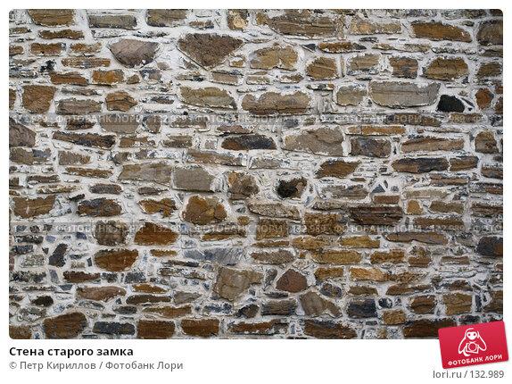 Стена старого замка, фото № 132989, снято 25 ноября 2007 г. (c) Петр Кириллов / Фотобанк Лори