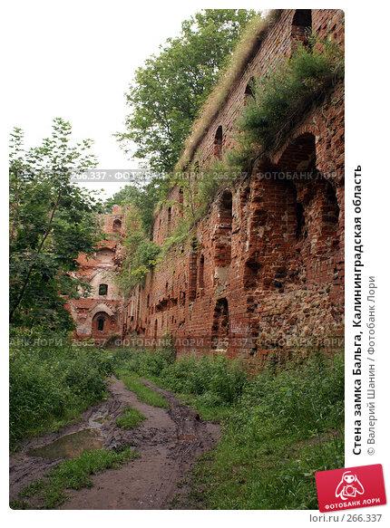 Стена замка Бальга, Калининградская область, фото № 266337, снято 29 июля 2007 г. (c) Валерий Шанин / Фотобанк Лори