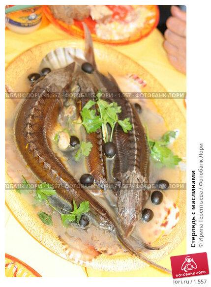 Стерлядь с маслинами, эксклюзивное фото № 1557, снято 8 сентября 2005 г. (c) Ирина Терентьева / Фотобанк Лори