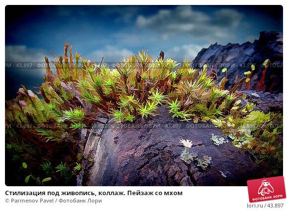 Стилизация под живопись, коллаж. Пейзаж со мхом, фото № 43897, снято 30 апреля 2007 г. (c) Parmenov Pavel / Фотобанк Лори