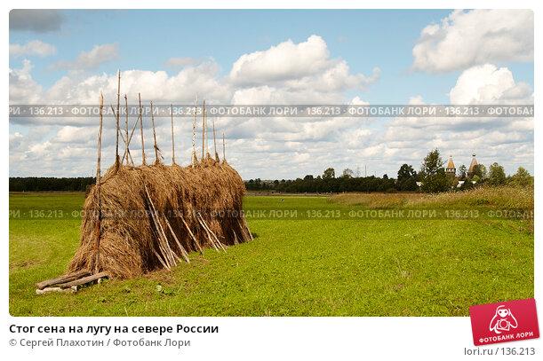 Стог сена на лугу на севере России, фото № 136213, снято 1 августа 2007 г. (c) Сергей Плахотин / Фотобанк Лори