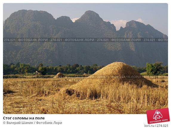 Стог соломы на поле, фото № 274021, снято 7 декабря 2007 г. (c) Валерий Шанин / Фотобанк Лори