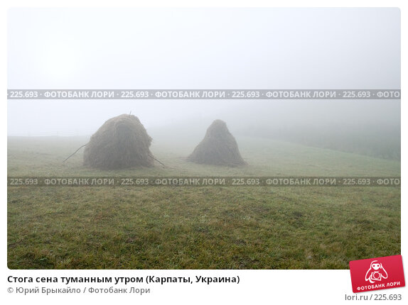 Купить «Стога сена туманным утром (Карпаты, Украина)», фото № 225693, снято 29 сентября 2007 г. (c) Юрий Брыкайло / Фотобанк Лори