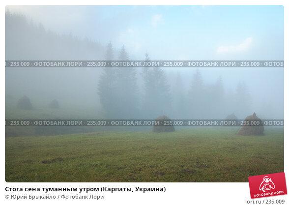 Стога сена туманным утром (Карпаты, Украина), фото № 235009, снято 29 сентября 2007 г. (c) Юрий Брыкайло / Фотобанк Лори