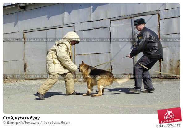 Купить «Стой, кусать буду», фото № 274157, снято 16 апреля 2008 г. (c) Дмитрий Лемешко / Фотобанк Лори