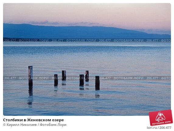 Столбики в Женевском озере, фото № 206477, снято 19 января 2017 г. (c) Кирилл Николаев / Фотобанк Лори