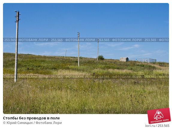 Столбы без проводов в поле, фото № 253565, снято 12 августа 2007 г. (c) Юрий Синицын / Фотобанк Лори