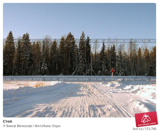 Стоп, фото № 172745, снято 22 декабря 2007 г. (c) Бяков Вячеслав / Фотобанк Лори