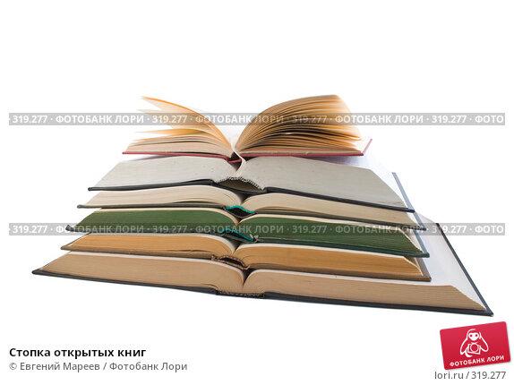 Стопка открытых книг, фото № 319277, снято 2 июня 2008 г. (c) Евгений Мареев / Фотобанк Лори