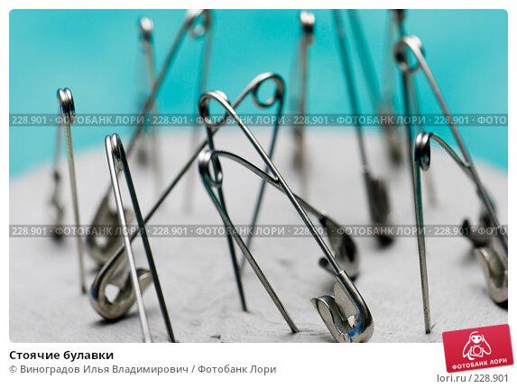 Стоячие булавки, фото № 228901, снято 24 декабря 2007 г. (c) Виноградов Илья Владимирович / Фотобанк Лори