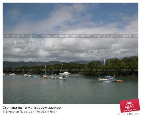 Стоянка яхт в мангровом заливе, фото № 198737, снято 18 октября 2006 г. (c) Вячеслав Потапов / Фотобанк Лори