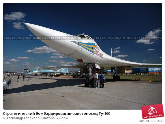 Стратегический бомбардировщик-ракетоносец Ту-160, фото № 119277, снято 28 января 2004 г. (c) Александр Гаврилов / Фотобанк Лори
