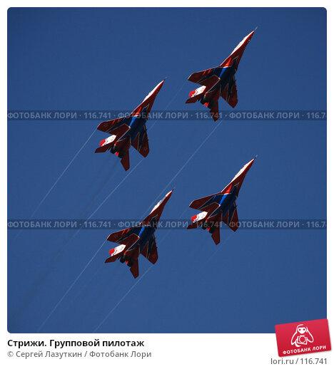 Стрижи. Групповой пилотаж, фото № 116741, снято 11 августа 2007 г. (c) Сергей Лазуткин / Фотобанк Лори