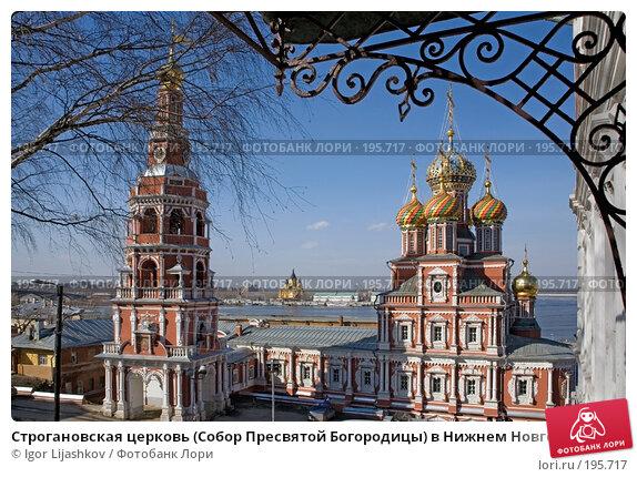 Строгановская церковь (Собор Пресвятой Богородицы) в Нижнем Новгороде, фото № 195717, снято 22 марта 2007 г. (c) Igor Lijashkov / Фотобанк Лори
