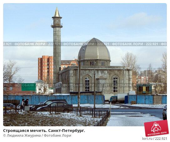 Строящаяся мечеть. Санкт-Петербург., фото № 222921, снято 4 февраля 2008 г. (c) Людмила Жмурина / Фотобанк Лори