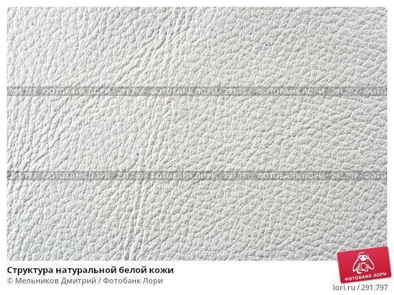 Структура натуральной белой кожи, фото № 291797, снято 11 мая 2008 г. (c) Мельников Дмитрий / Фотобанк Лори