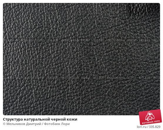 Структура натуральной черной кожи, фото № 335829, снято 11 мая 2008 г. (c) Мельников Дмитрий / Фотобанк Лори