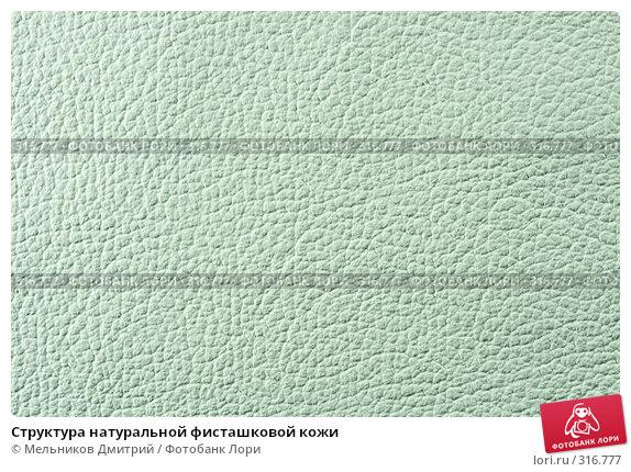 Структура натуральной фисташковой кожи, фото № 316777, снято 11 мая 2008 г. (c) Мельников Дмитрий / Фотобанк Лори