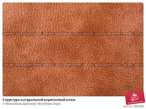 Структура натуральной коричневой кожи, фото № 304005, снято 11 мая 2008 г. (c) Мельников Дмитрий / Фотобанк Лори